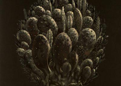Le devenir épineux de l'être, 2004 Acrylique sur toile 97 x 130 cm