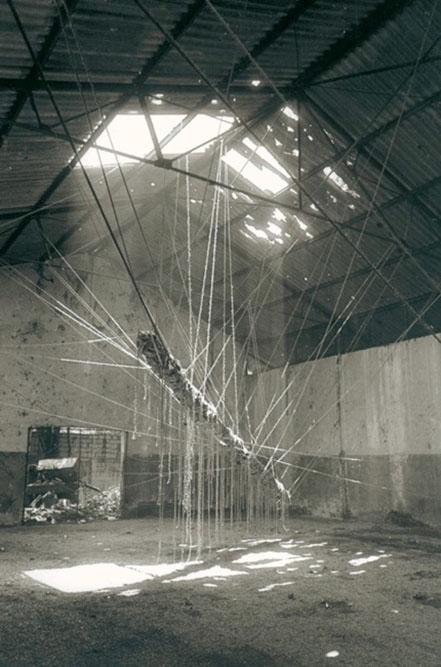 Libelula, 1998 Installation éphémère Vénézuela